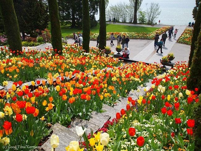 ボーデン湖に浮かぶ花の楽園「マイナウ島」はどの季節がおすすめ?