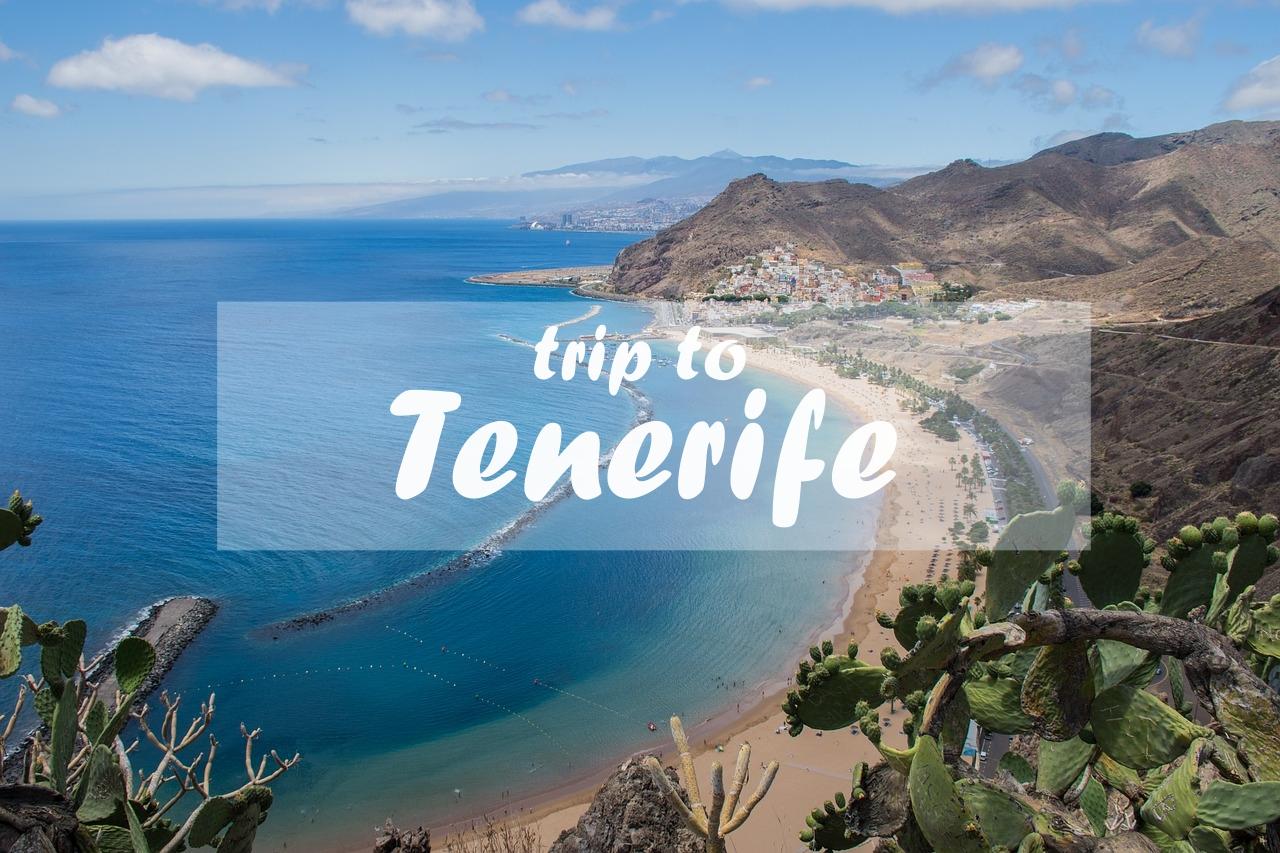 カナリア諸島のテネリフェ島に行ってきます!テネリフェ島ってどんな島?