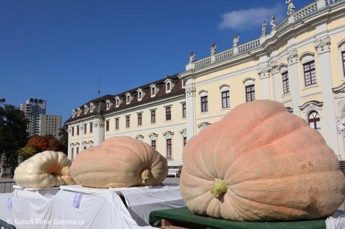 ルートヴィヒスブルク城 巨大かぼちゃ