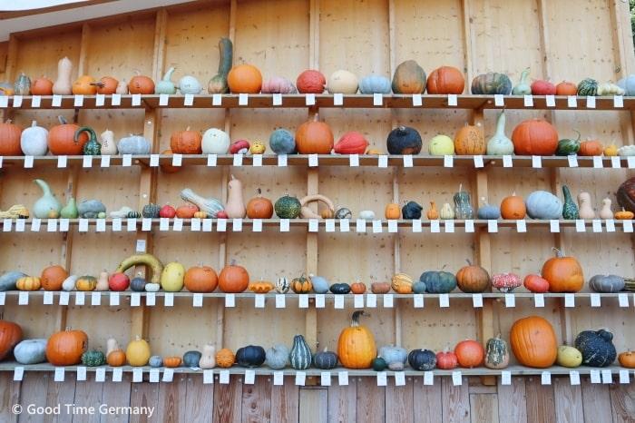 ドイツ かぼちゃ祭り